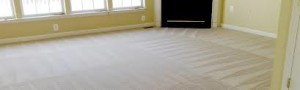 Westwood carpet cleaners